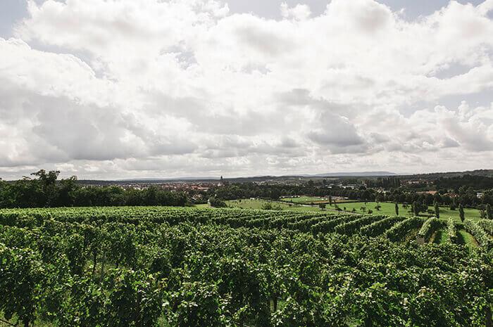Wineries and Vineyards for Sale - 🍇 Wineries & Vineyards ...