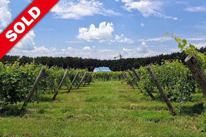 Thistle Gate Vineyard